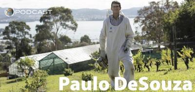 Find Your Feet Podcast, Paulo DeSouza, Bee population, health & wellbeing podcast